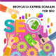 Dropcatch Expired Domain For SEO